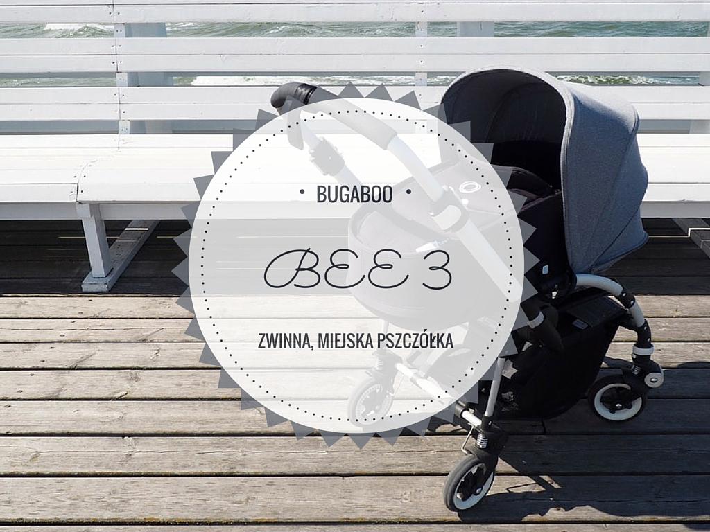BUGABOO-2