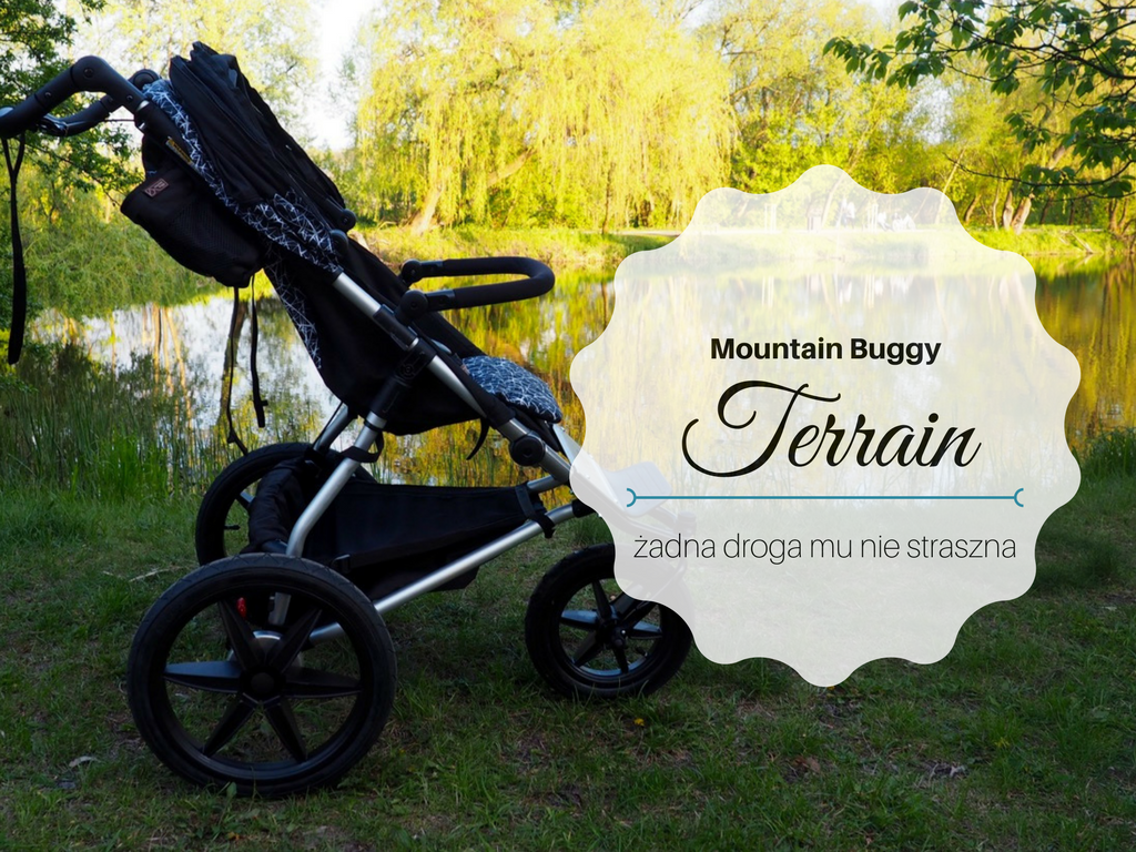 mountain buggy terrain