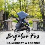 Bugaboo Fox - najmłodszy w rodzinie