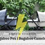 Bugaboo Fox i Bugaboo Cameleon - starcie gigantów
