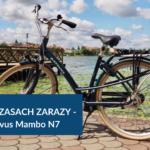 Rower w czasach zarazy - bezpiecznie i zdrowo. Recenzja Batavus Mambo N7